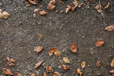 ground zoom background