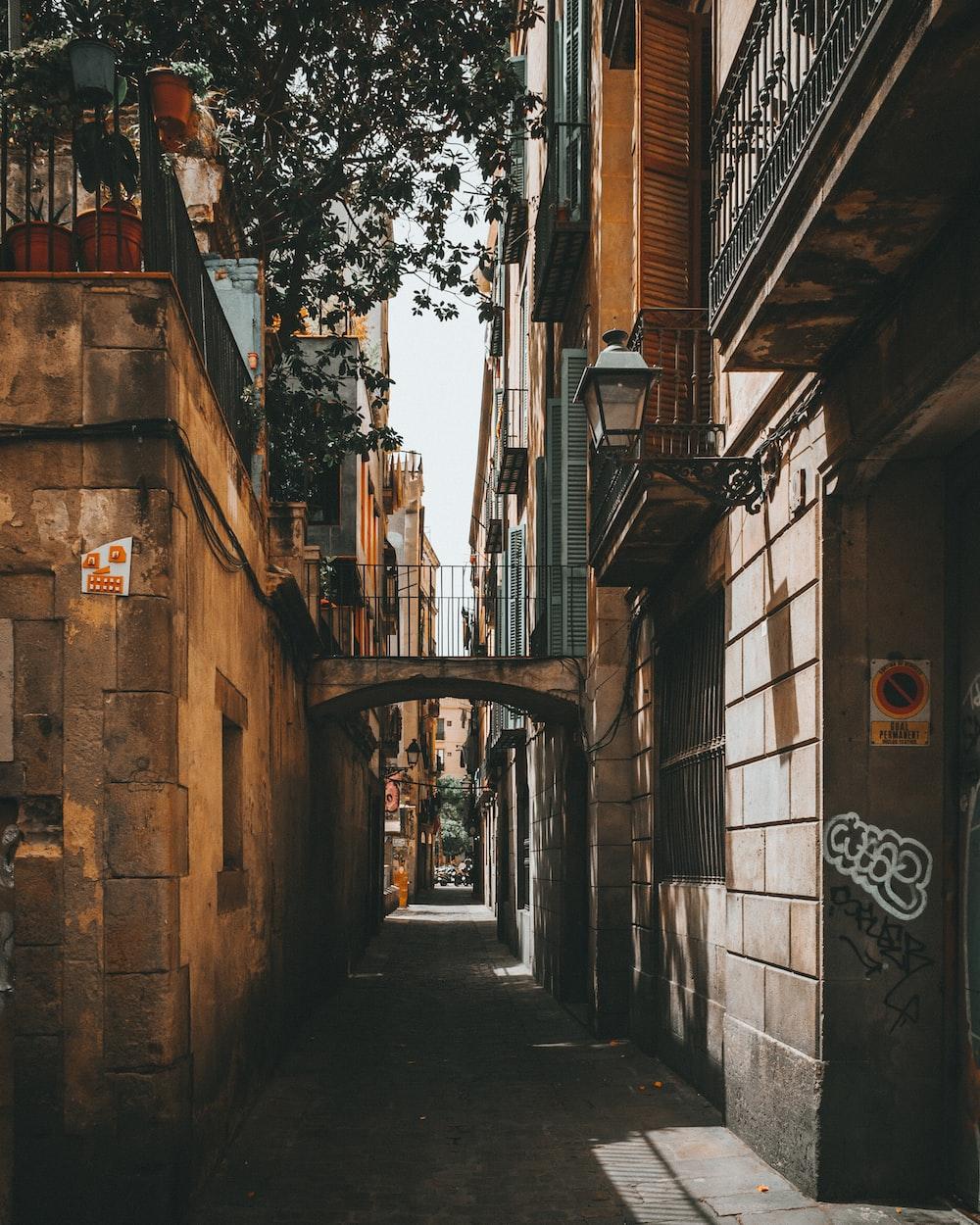 empty road between concrete buildings