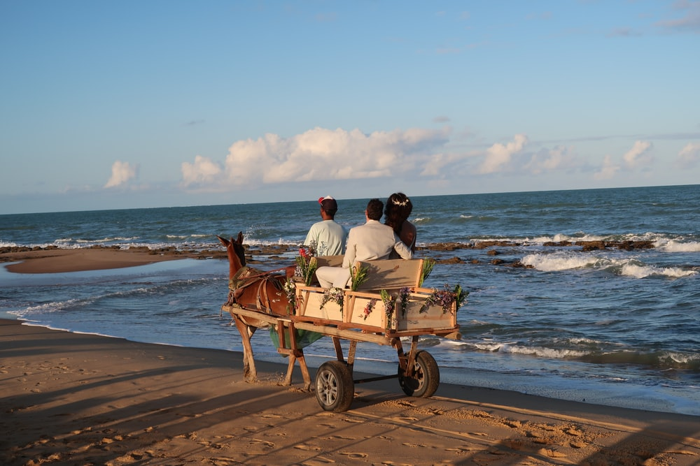 three persons riding horse carriage on seashore during day