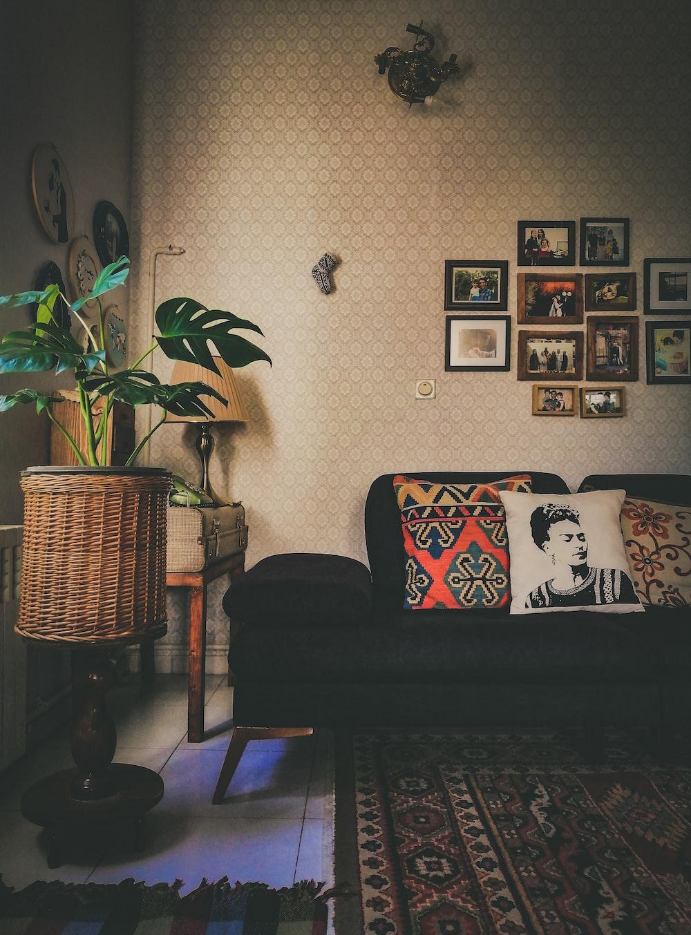 black fabric sofa beside green-leafed plant
