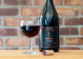 Aymura Pinot Noir wine bottle