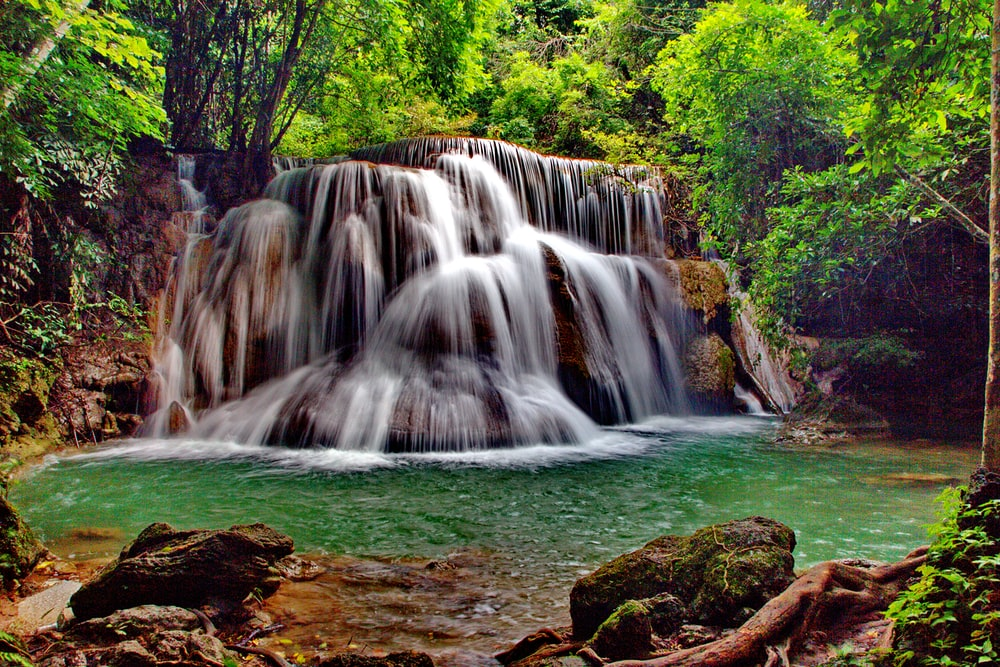 waterfalls beside green trees at daytime