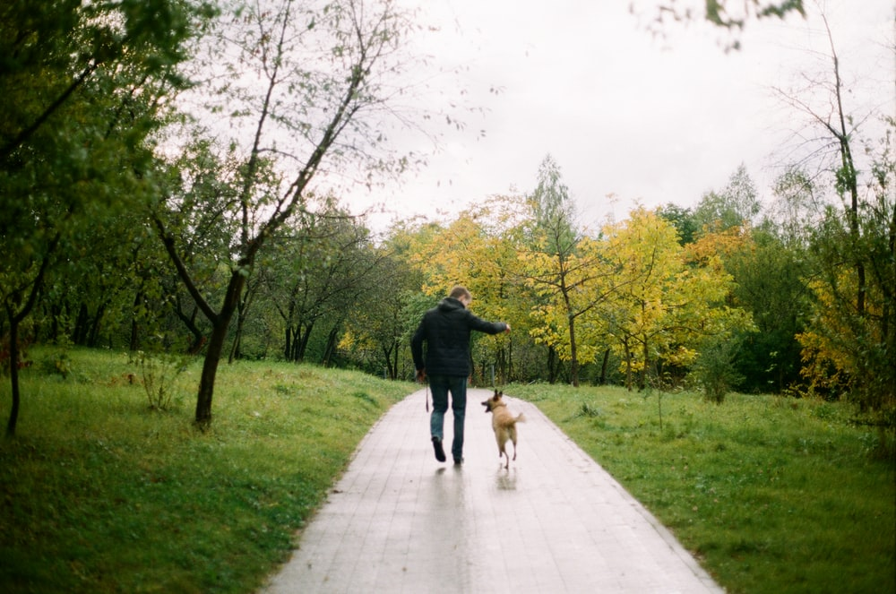 man beside dog walking in pathway surrounded by trees