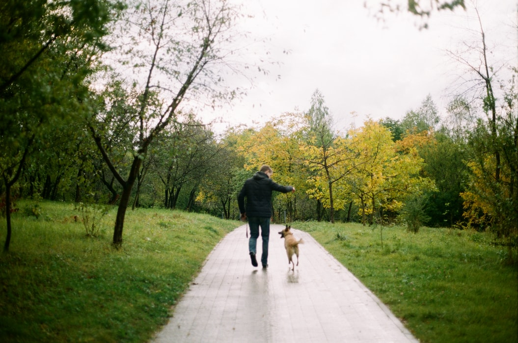 A man is more likely to get a woman's phone number if he is accompanied by a dog.