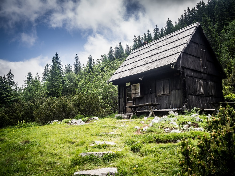 black and gray house beside green trees at daytime
