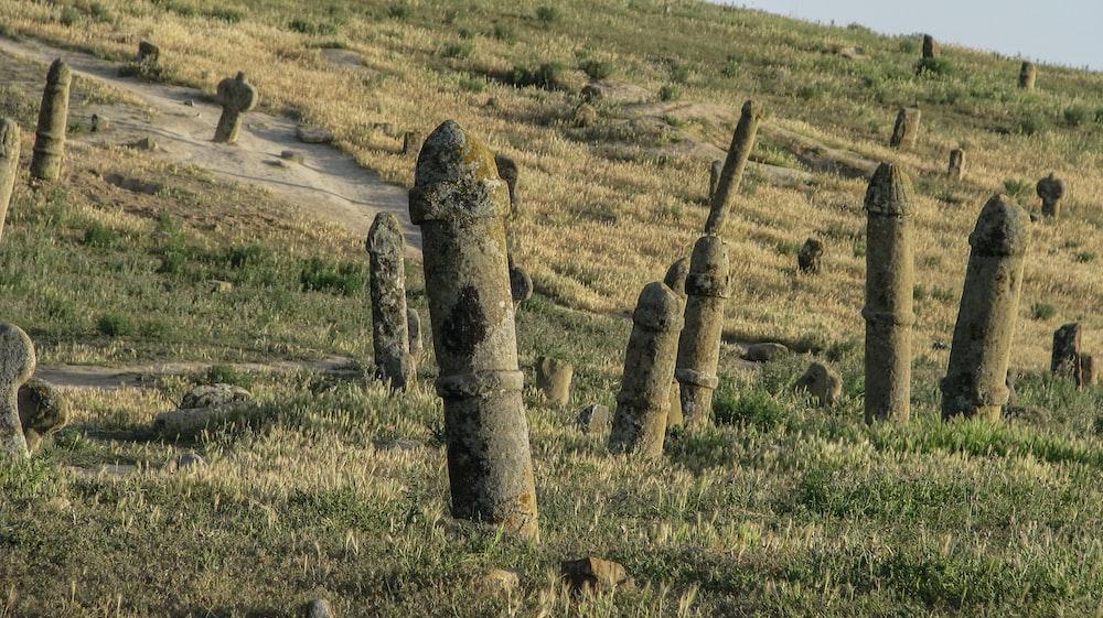 stone poles on grasslands