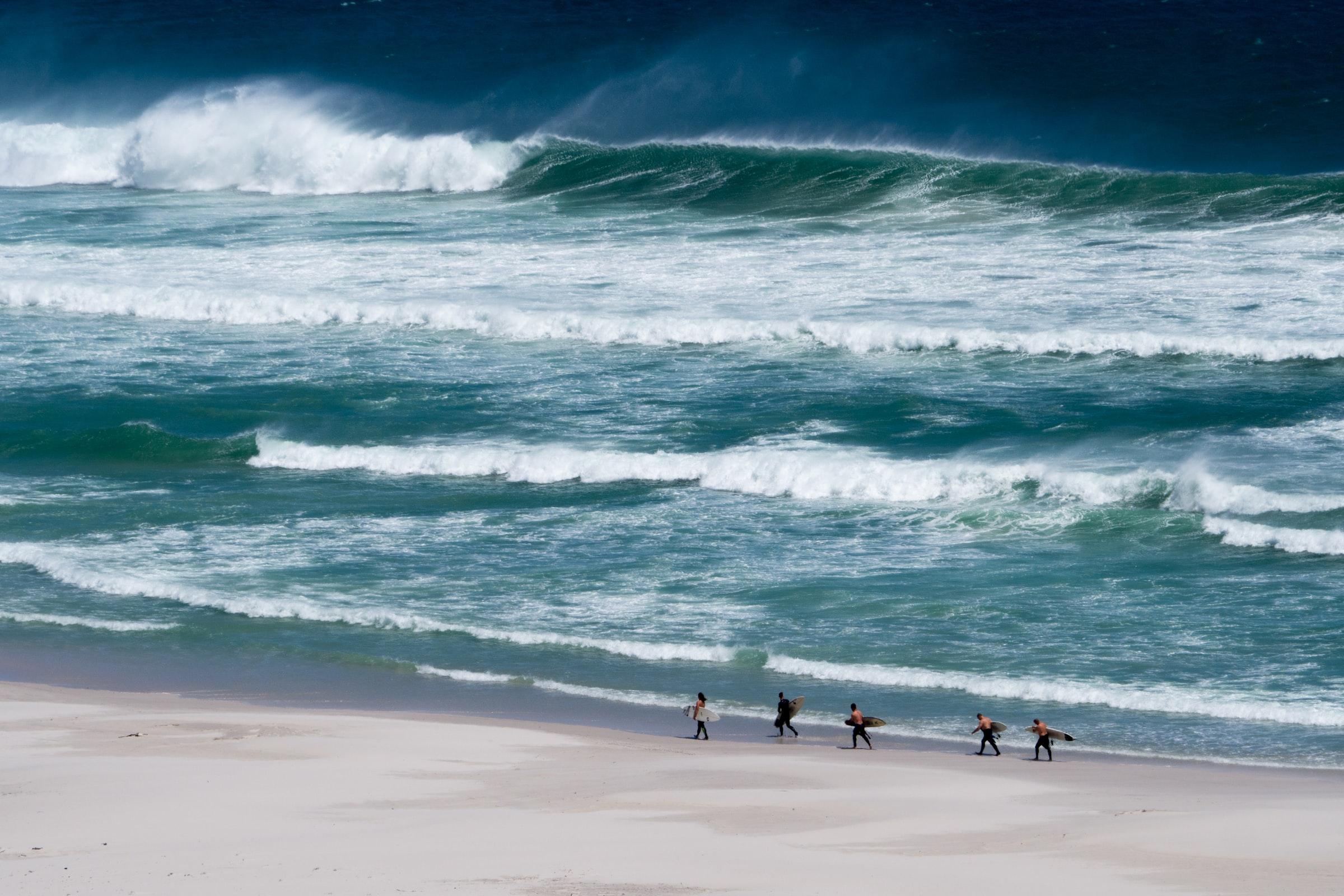 people carrying surfboard in seashore
