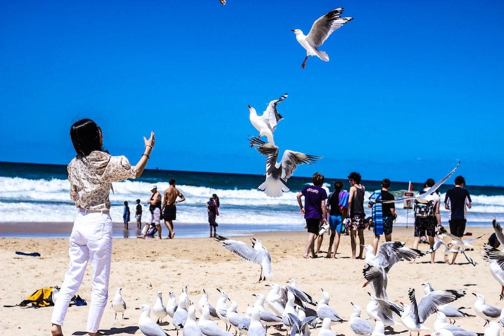 woman wearing white pants near white birds on seashore