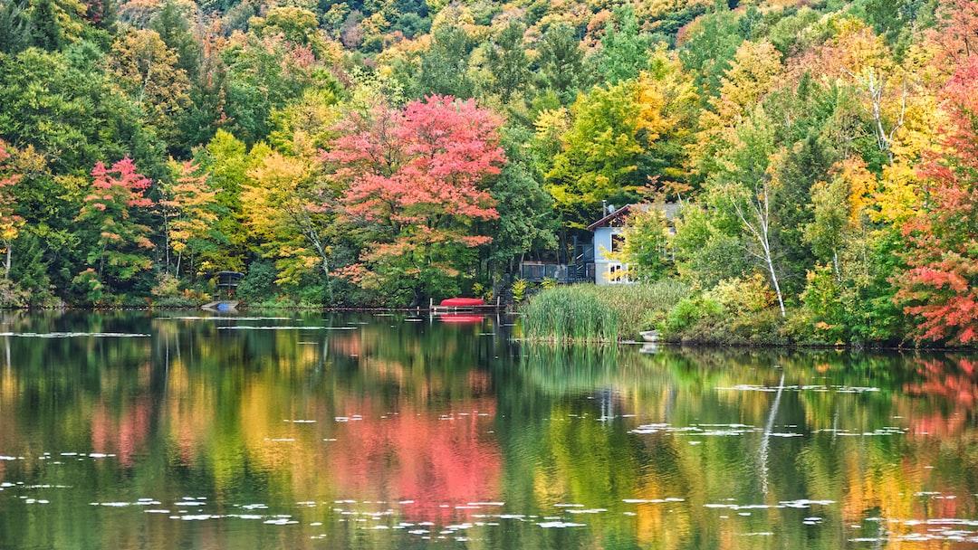 Reflets d'automne sur un lac de la belle province dans les cantons de l'Est.