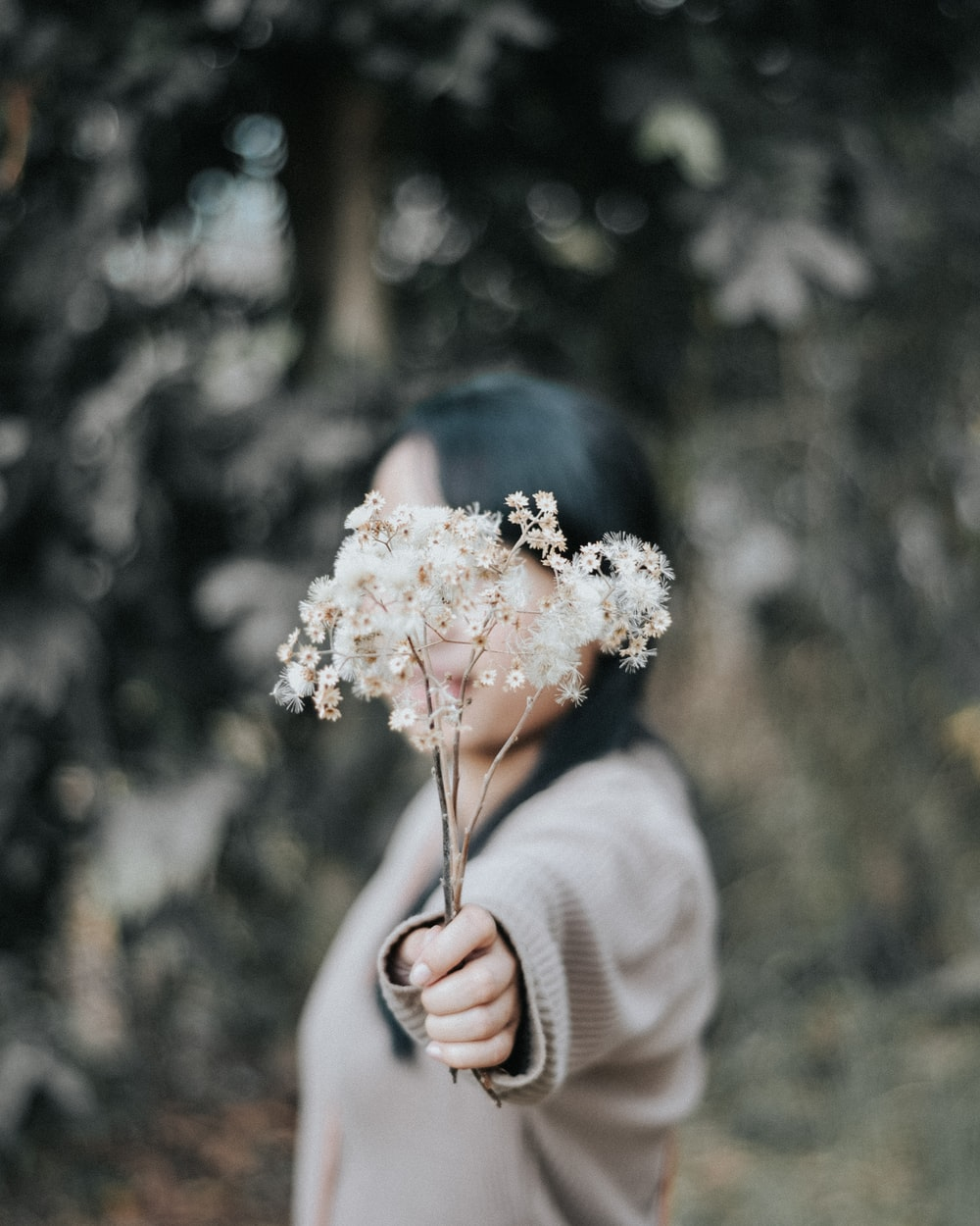 woman wearing brown sweater and holding white dandelion flowers