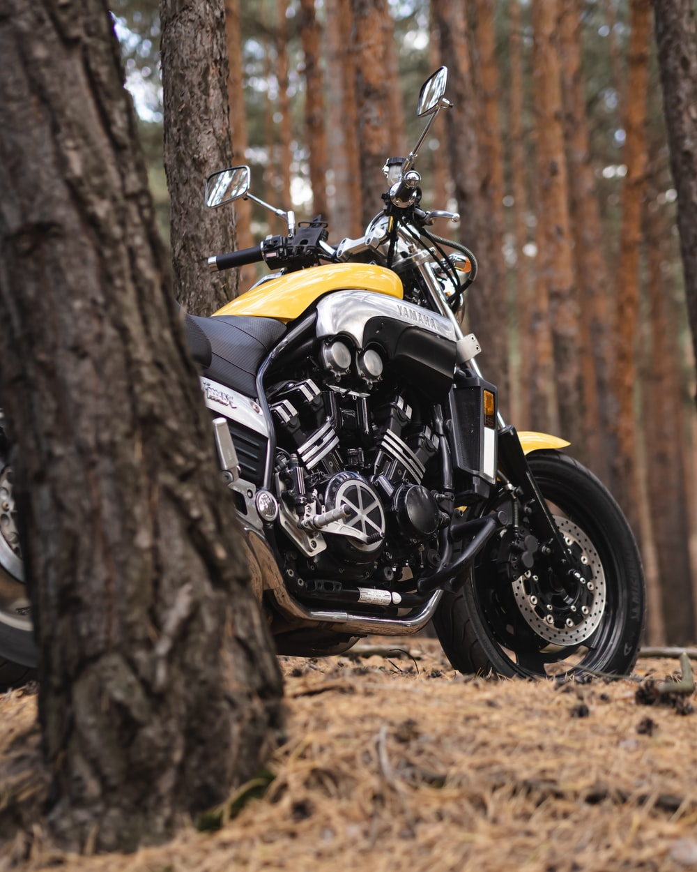 shallow focus photo of black and yellow motorcycle