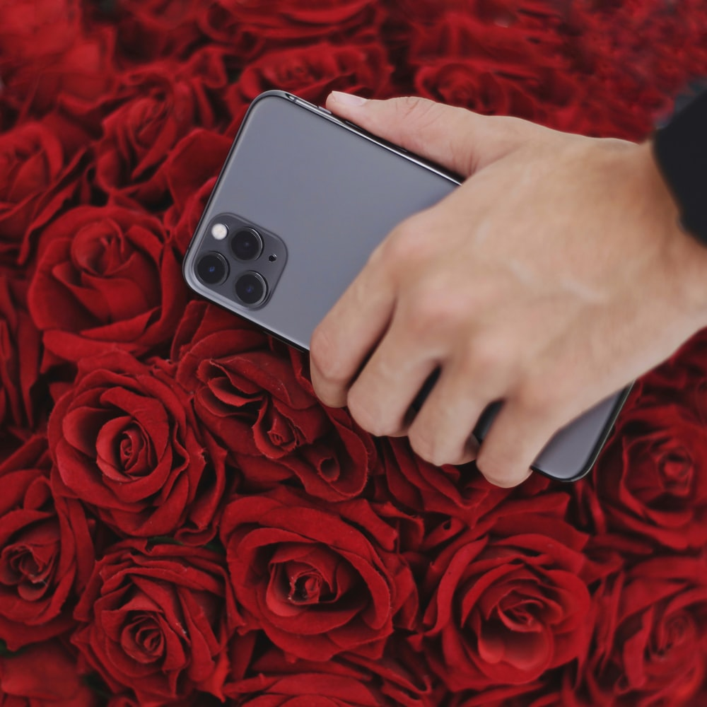 person holding iPhone 11 Pro Max