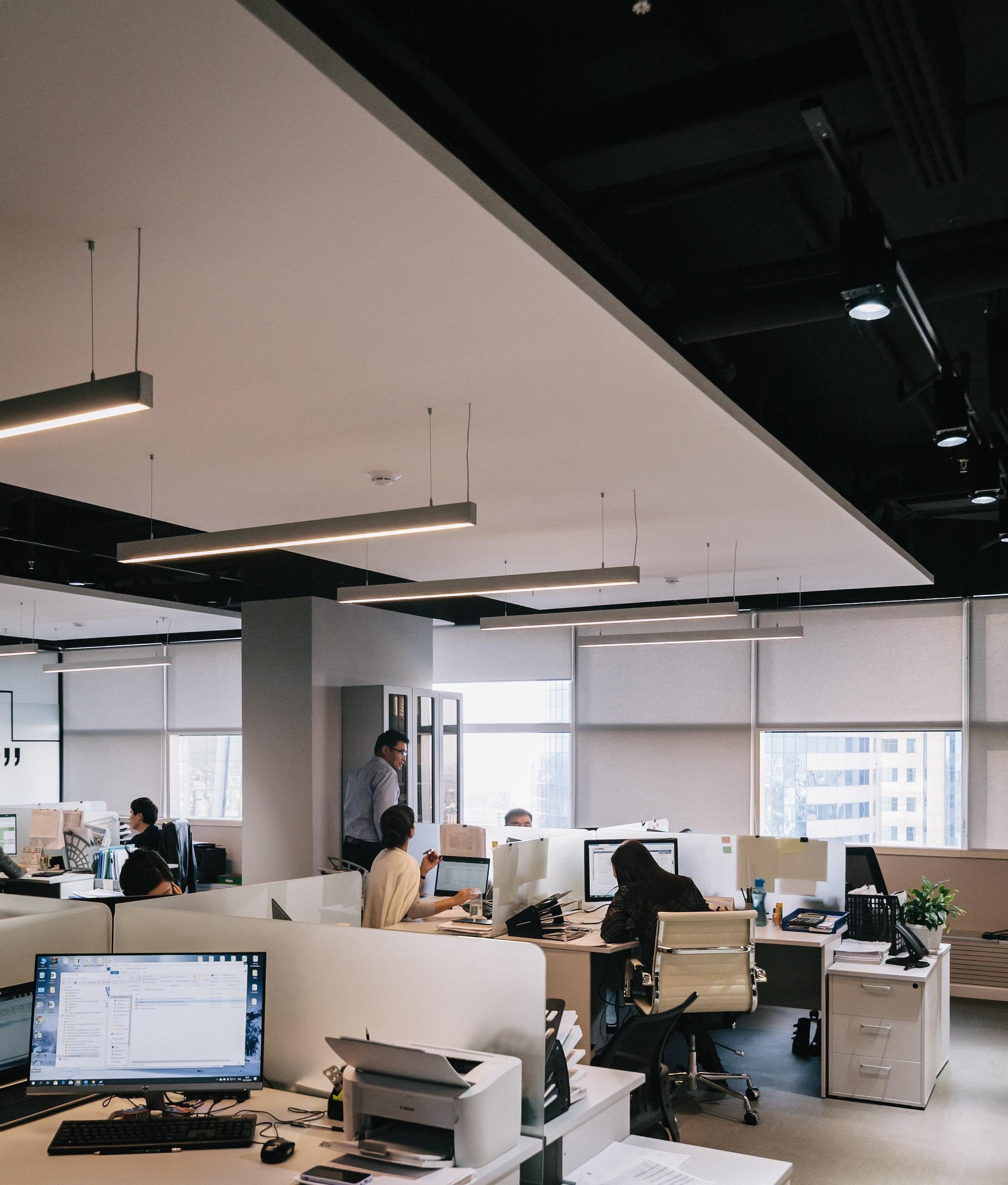 people inside office