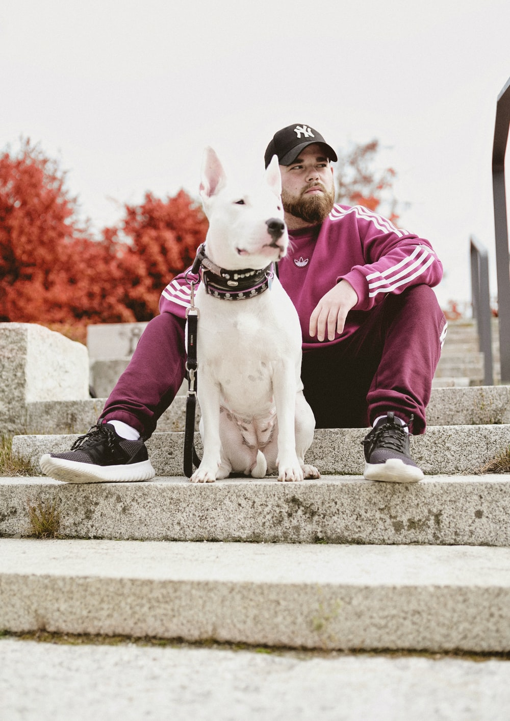 man and dog sitting on stairs