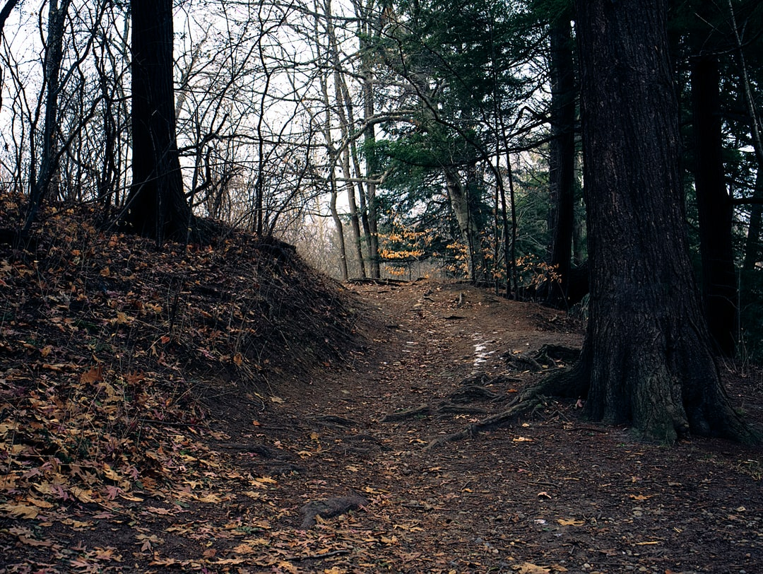 A path to nowhere in the Don Valley in Toronto Canada.