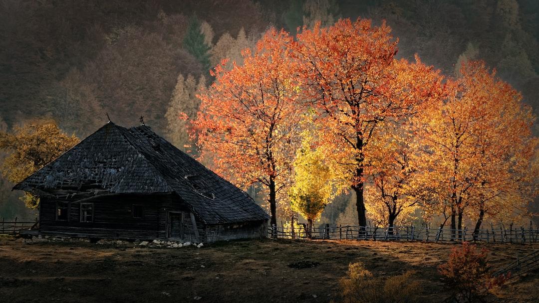 the sensational light of the sunset on a deserted house