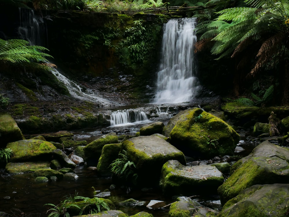 low-angle photography of waterfalls