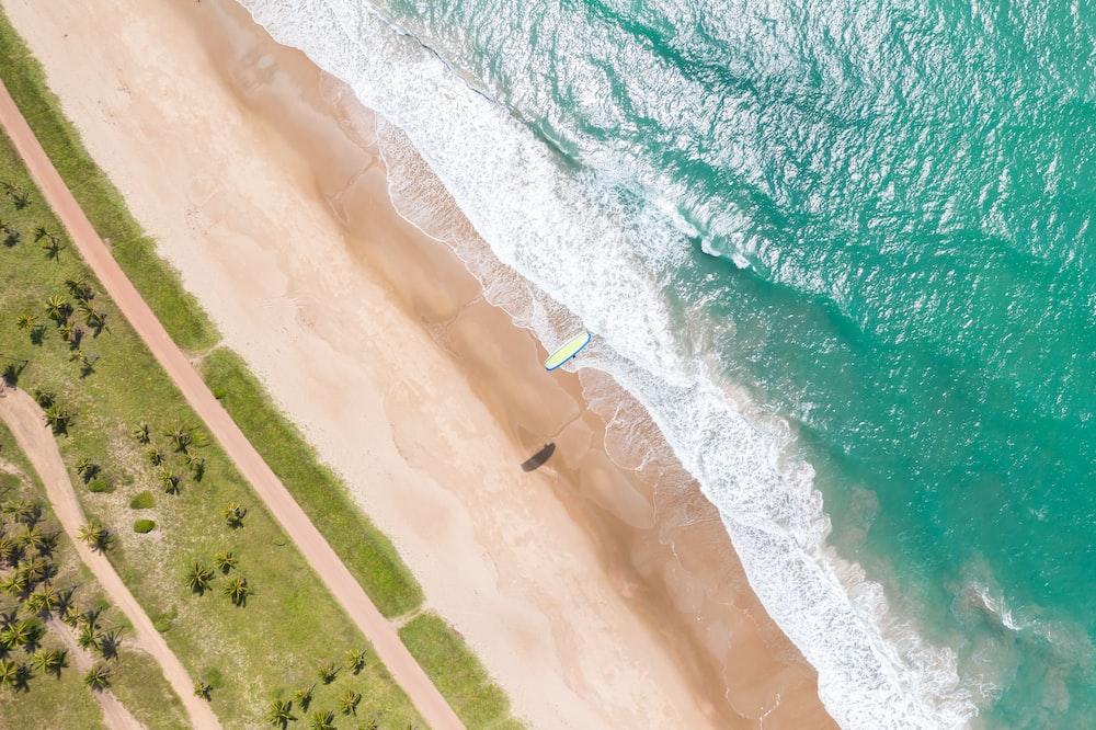 aerial view of seashore at daytime