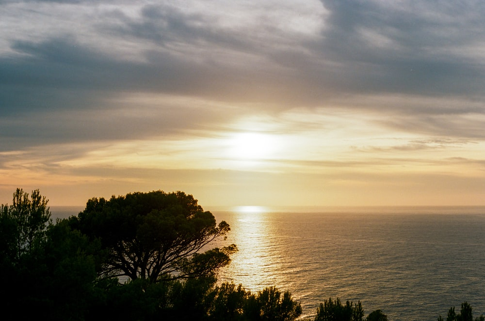 sea during sunrise