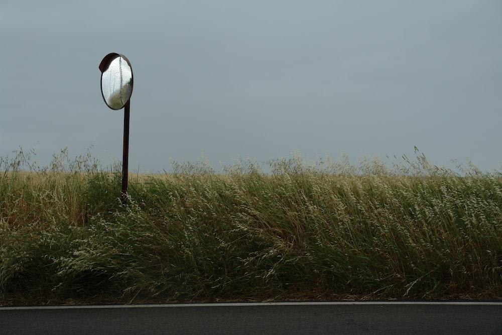 photo grass field and mirror street