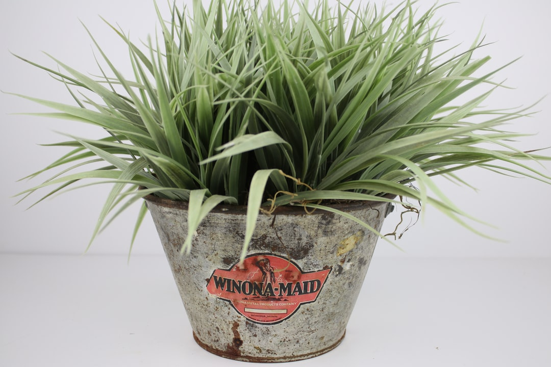 Faux green grass spills out over the sides of a vintage metal advertising pail by Winona-Maid with great vintage graphic in orange and black against the patina of the silver bucket. This is a great example of farmhouse decor style.