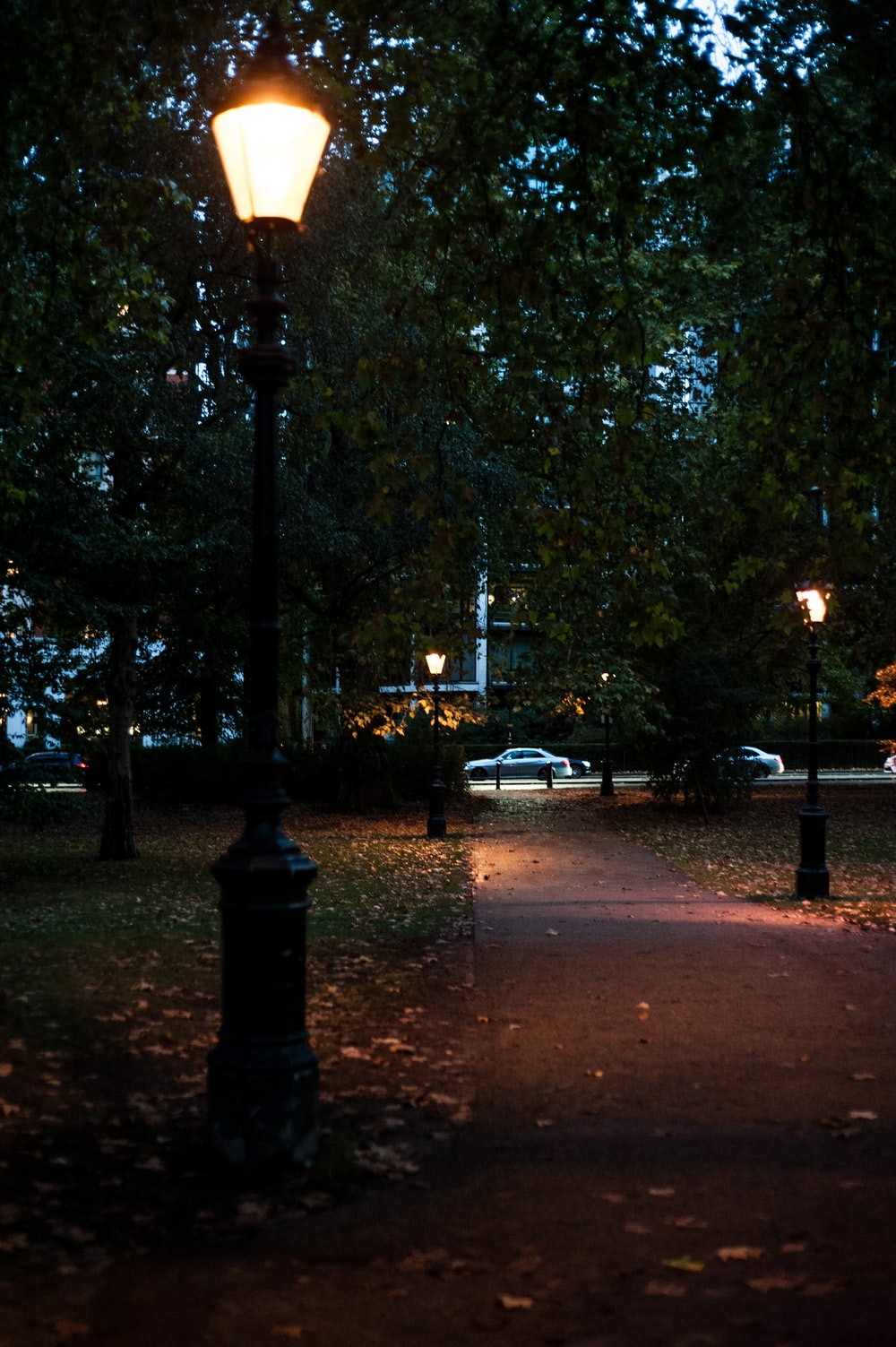 park with lampposts turned on