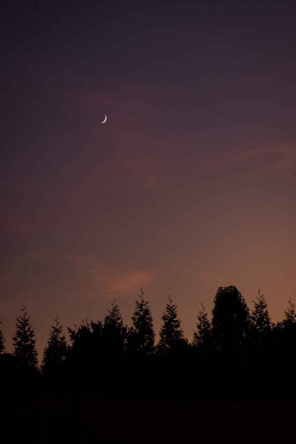 crescent moon at sunset sky