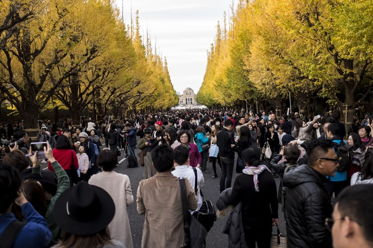 mùa thu Nhật Bản - tokyo