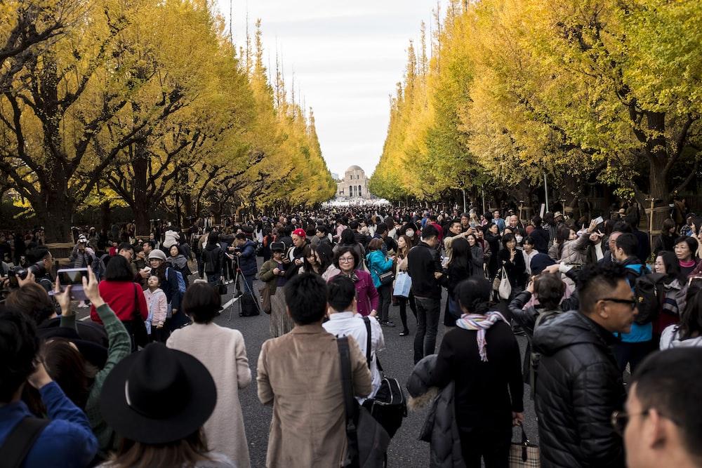 crowd standing between green trees