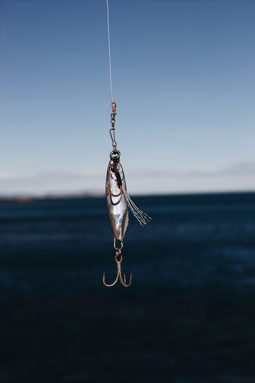 gray fish lure