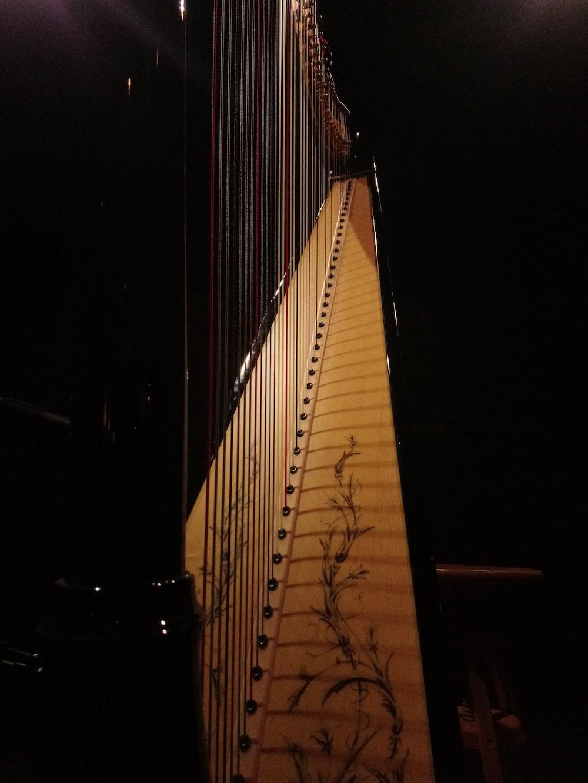 brown and black harp