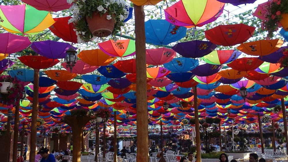 umbrellas hang above