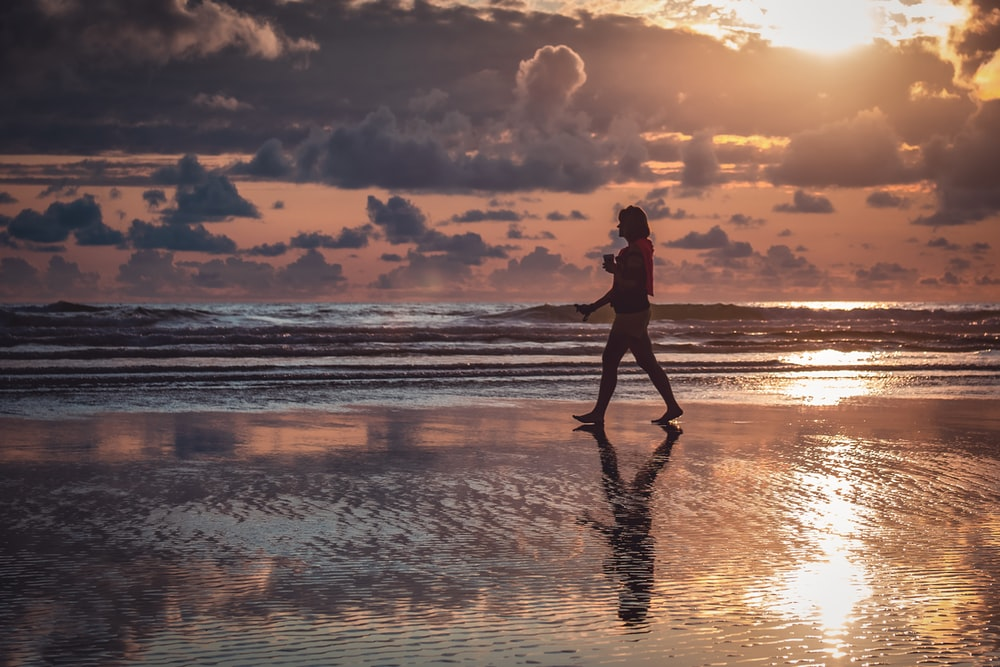 silhouette of person standing beside seashore