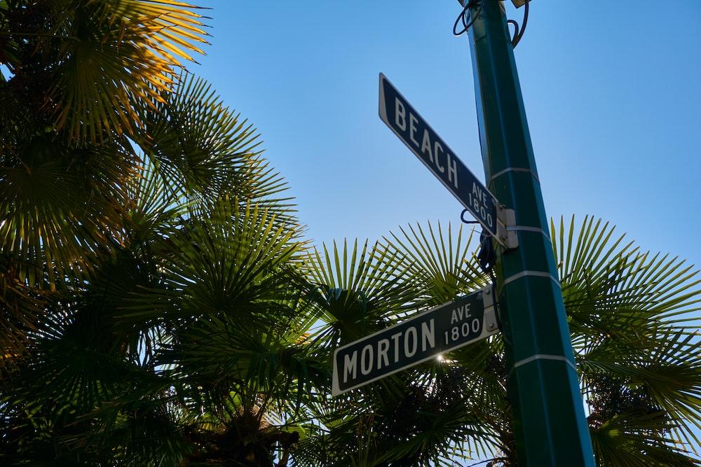 blue road signage near trees