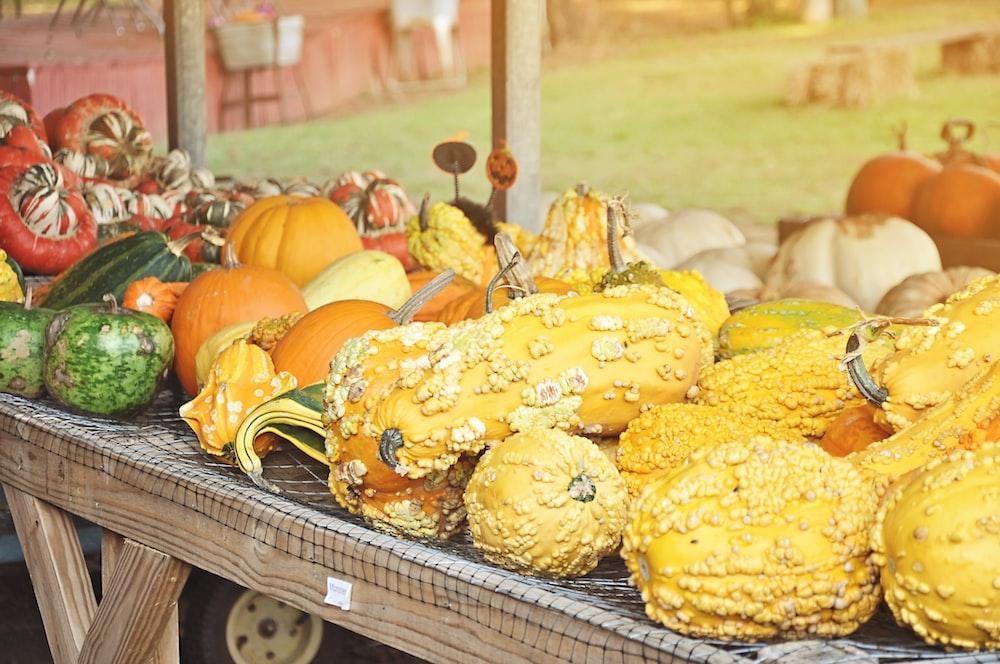 assorted sizes of pumpkins