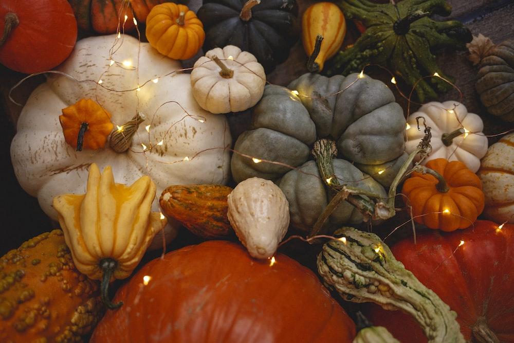 variety of pumpkin vegetables