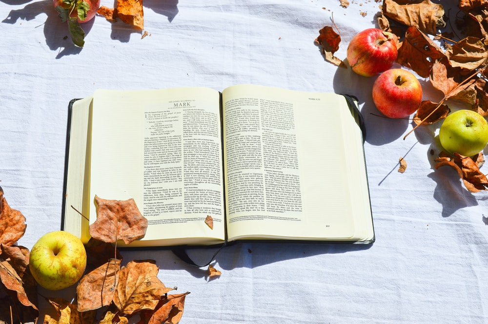 opened white book beside apples