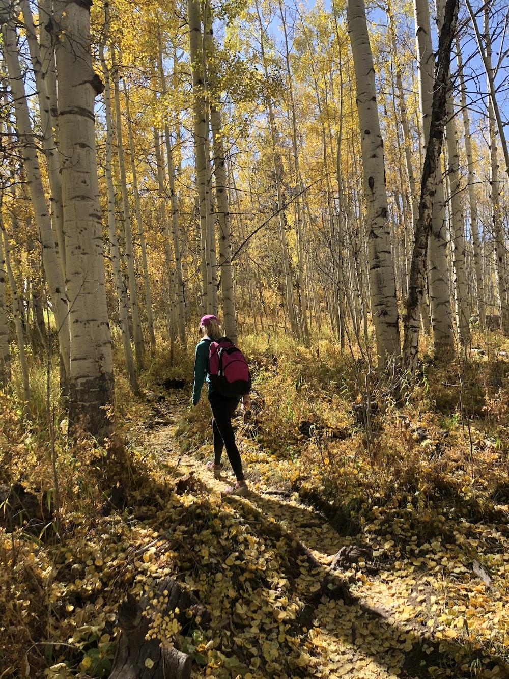 woman walking in woods