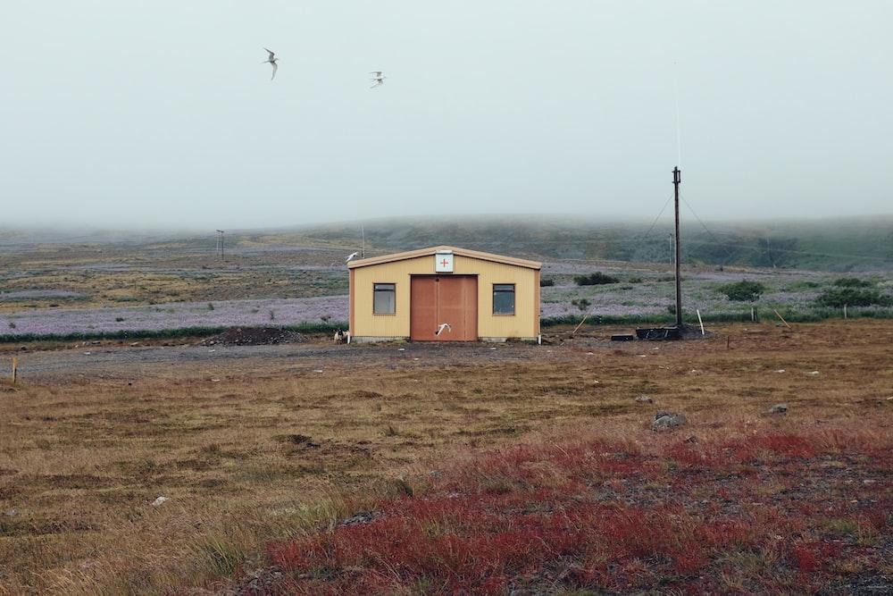 brown barn at daytime