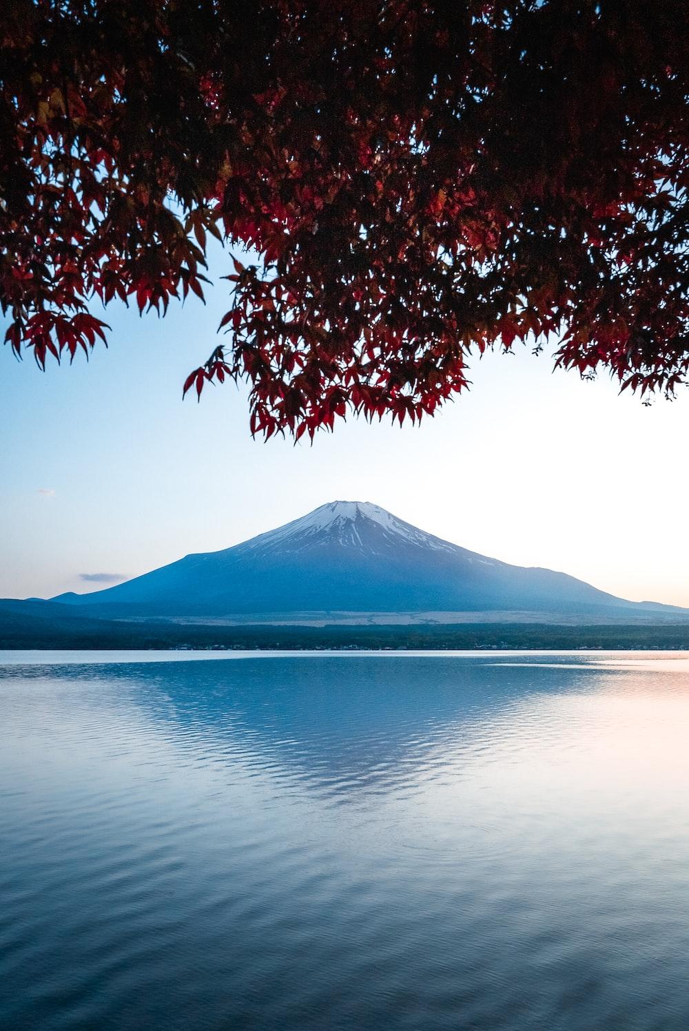 mountain near sea