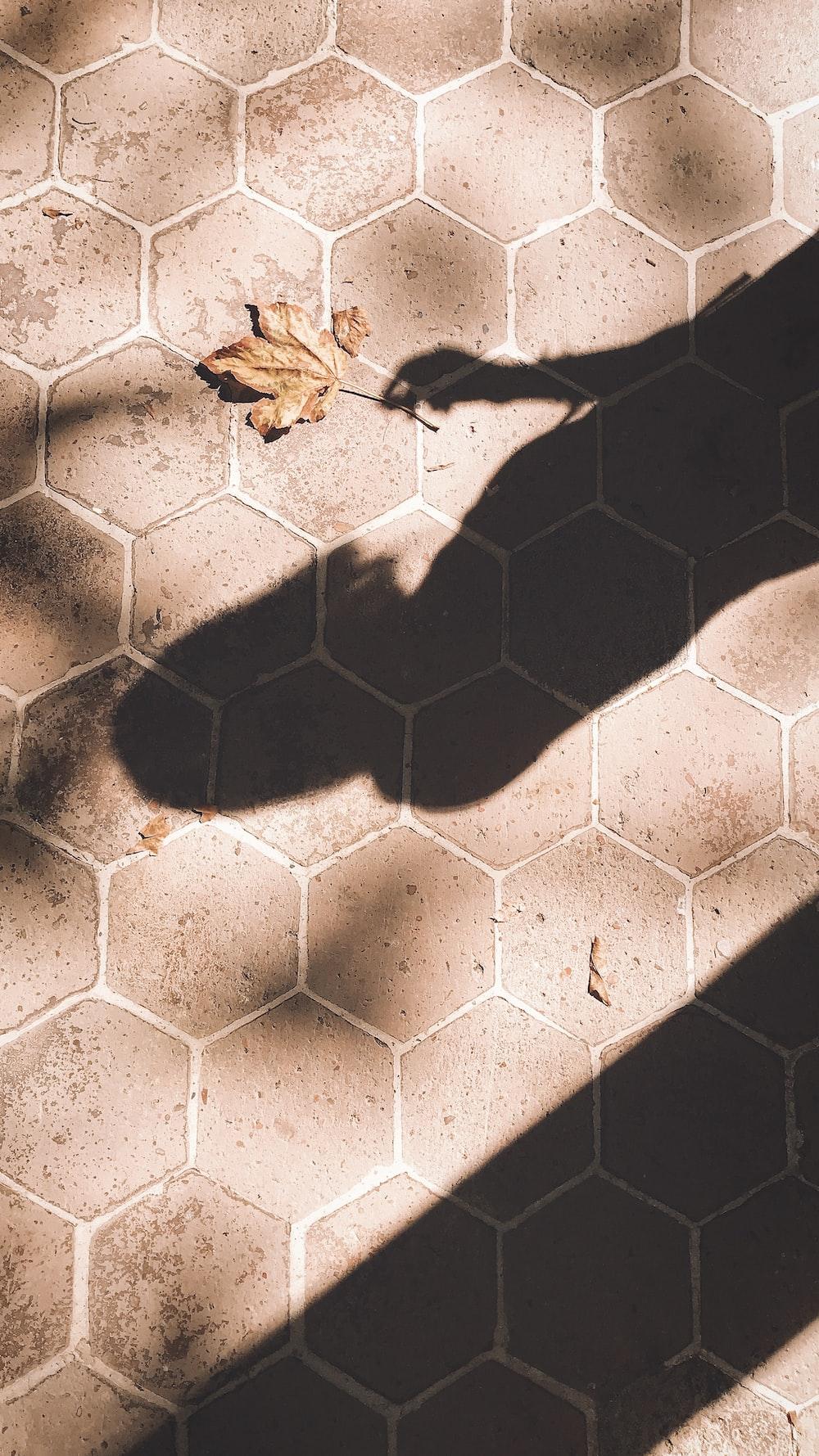 brown leaf on brick pathway