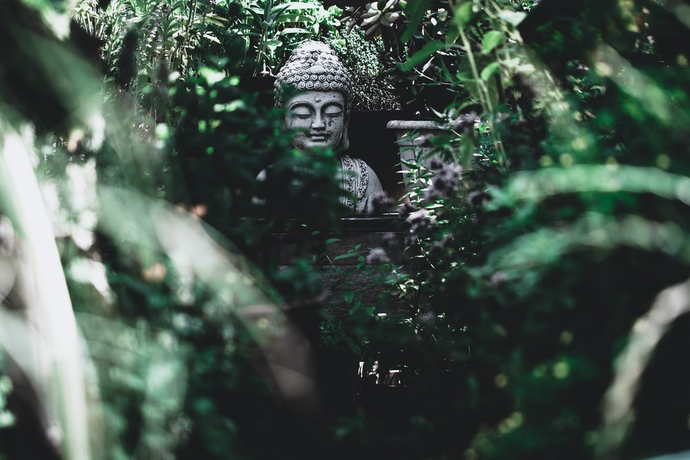 Buddha statue surrounded by green trees