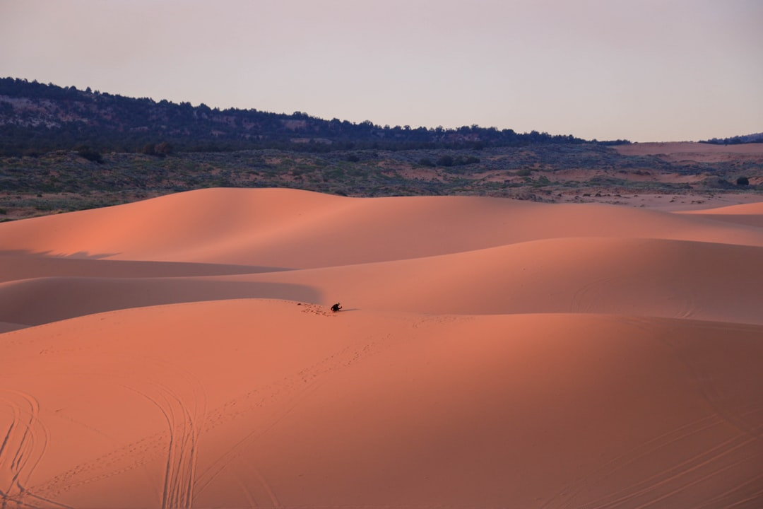 Man in the middle of a sand dune