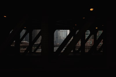 illinois zoom background