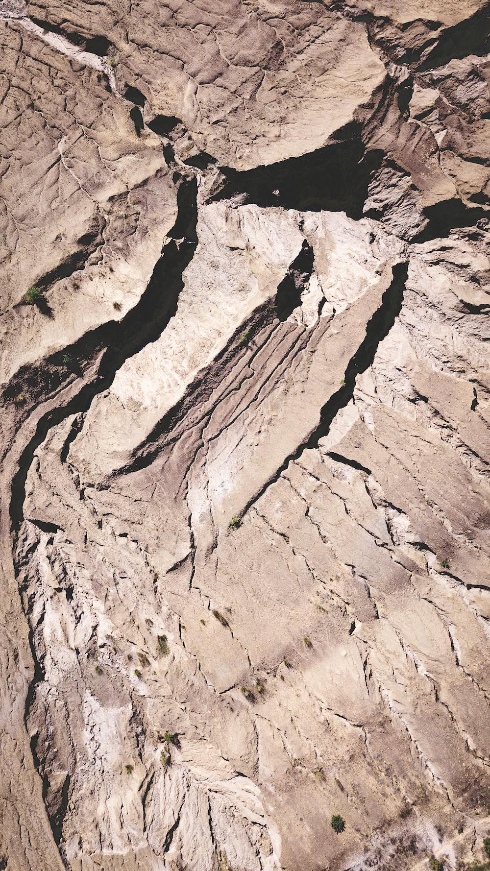 brown soil during daytime