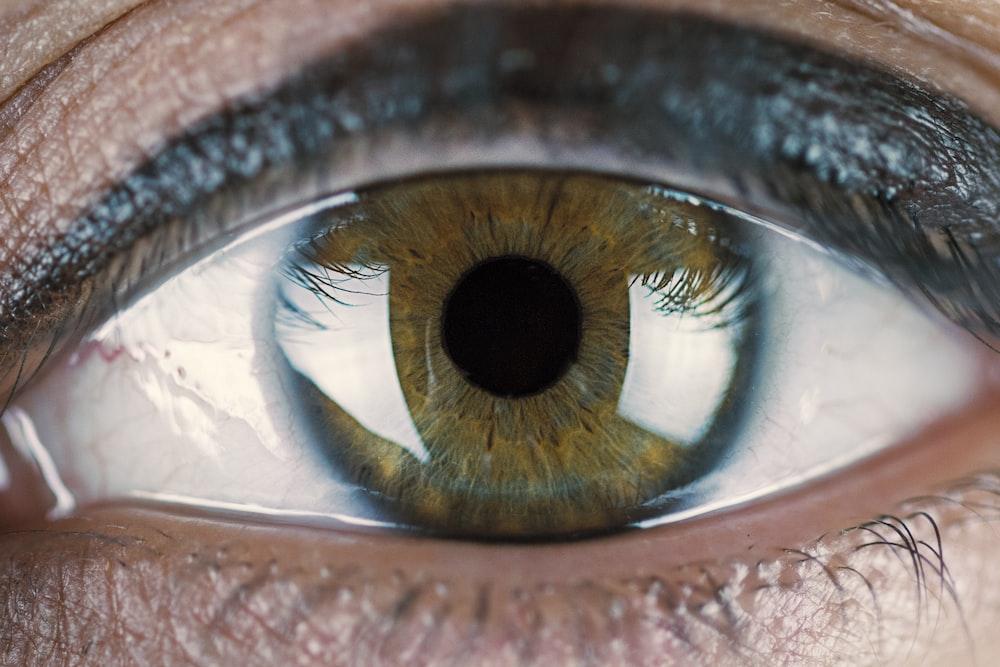 closeup photo of human eye