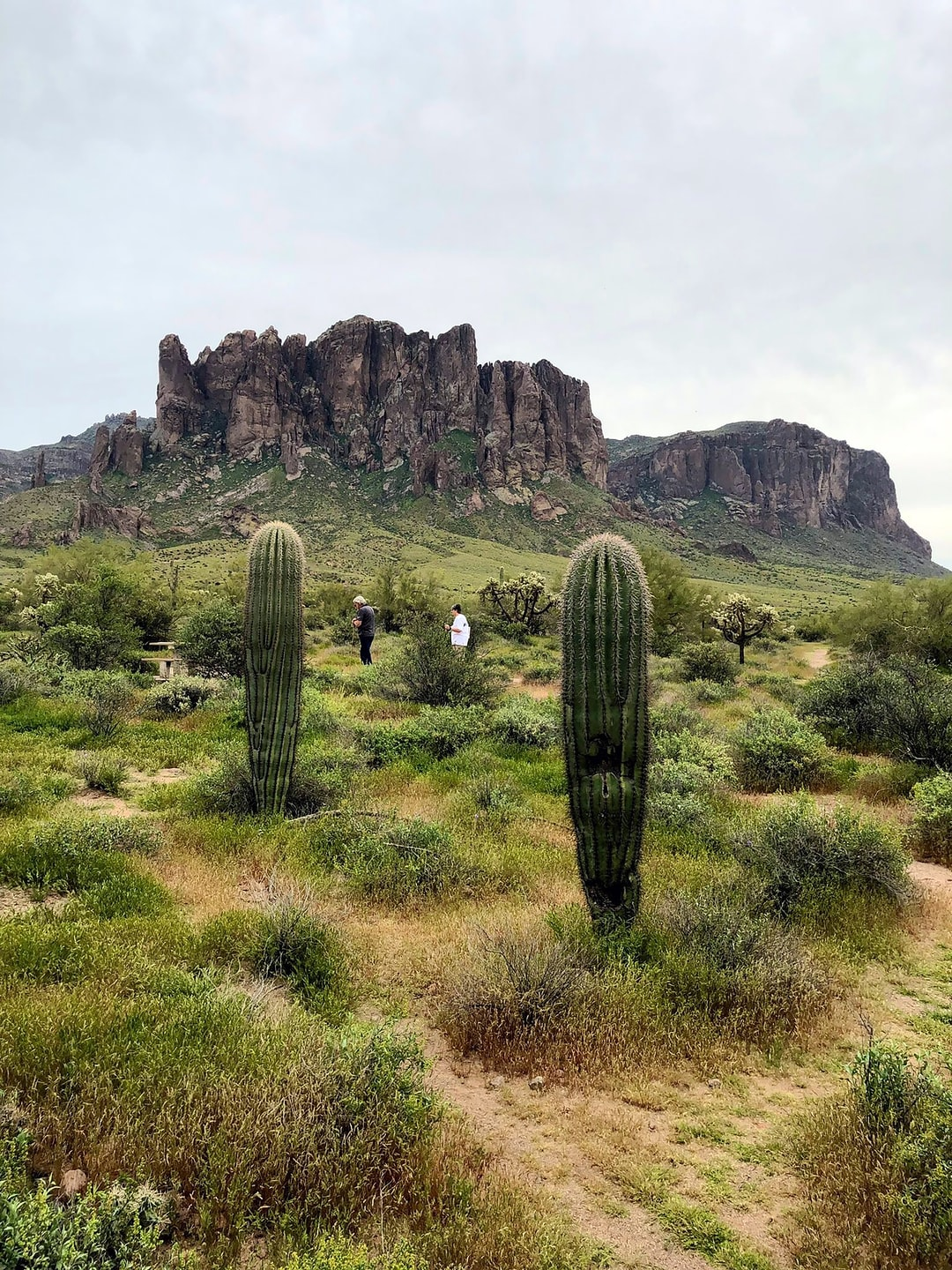 Hiking in the Superstitions