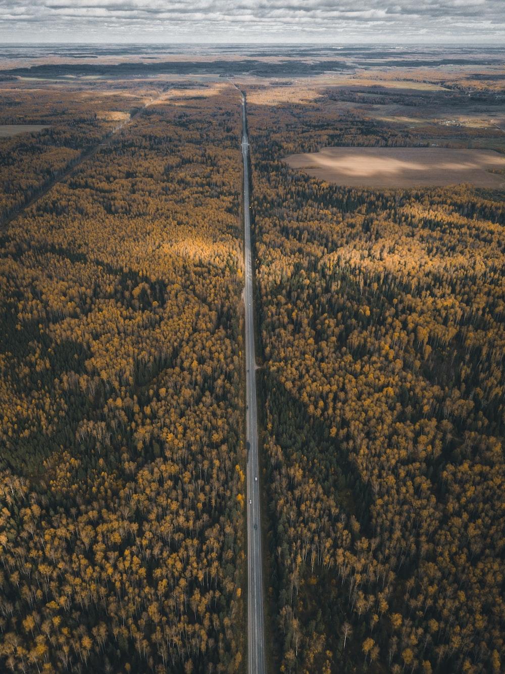 straight road between body of water