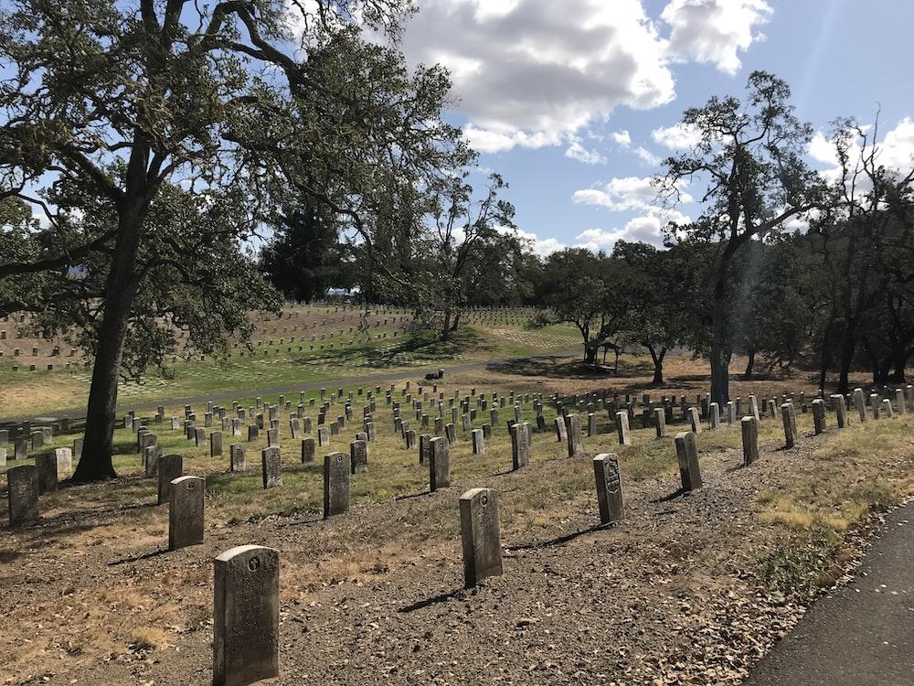 brown graveyard
