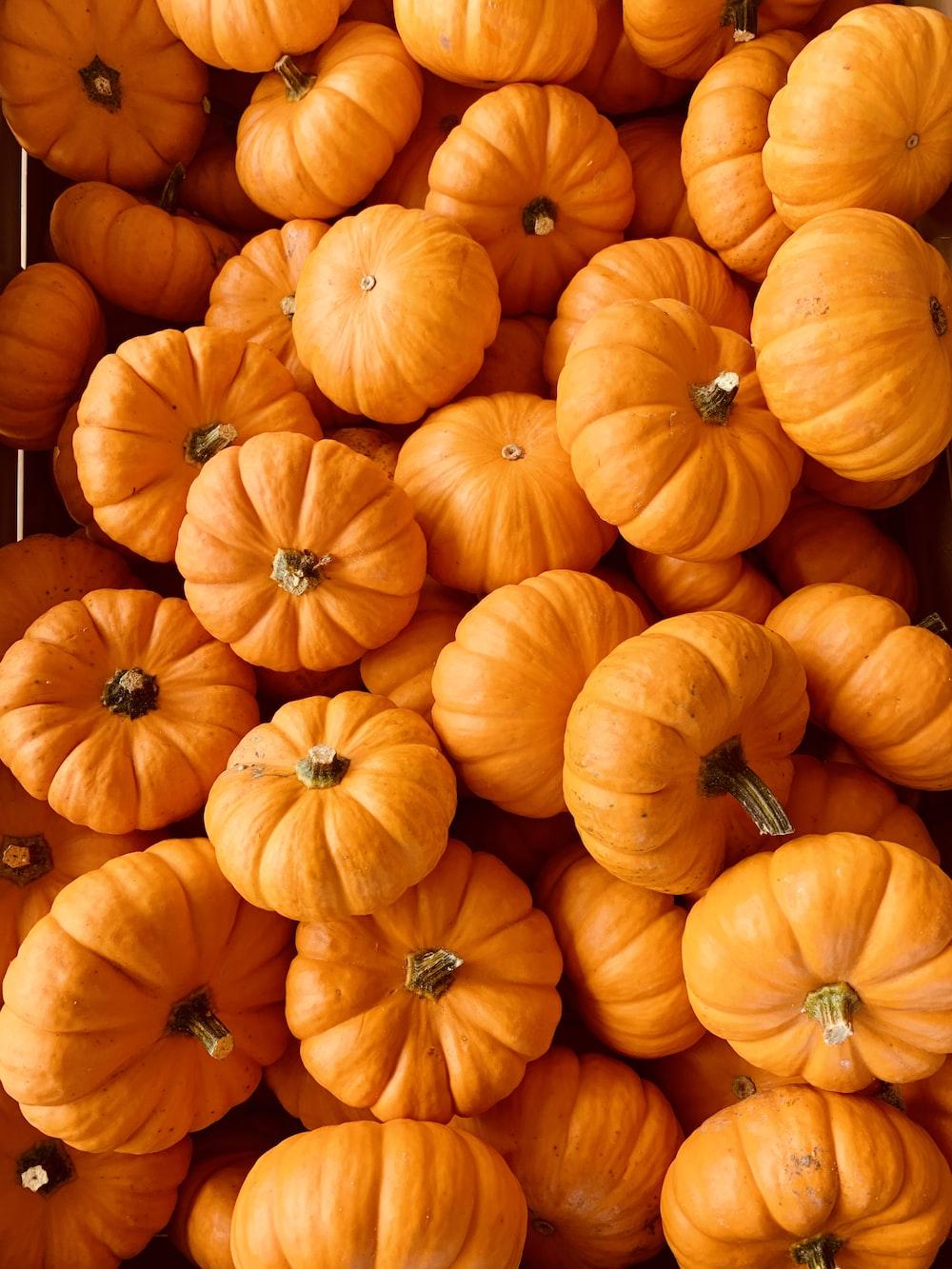 ile of orange pumpkins